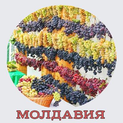 Молдова.Отдых в Молдавии